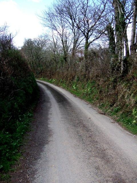 Lane near Tredown Farm