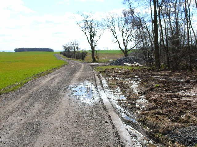 Farm road from Butterwick Moor Farm