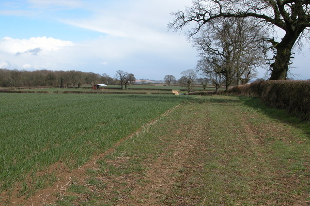 Farmland near Lower Farm, Icomb
