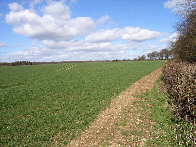 Farmland north of Little Missenden