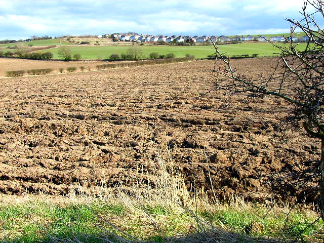 Ploughed field, Cookshold Lane, Sherburn