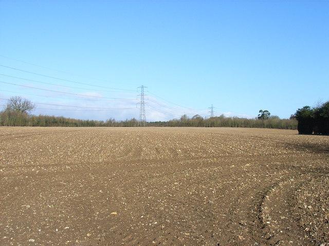Farmland at Woodrow