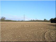 SU9396 : Farmland at Woodrow by Andrew Smith