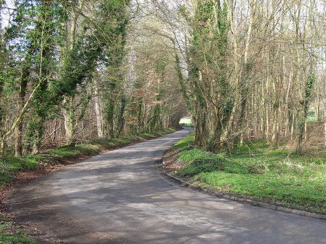 Lane, Marrods Bottom