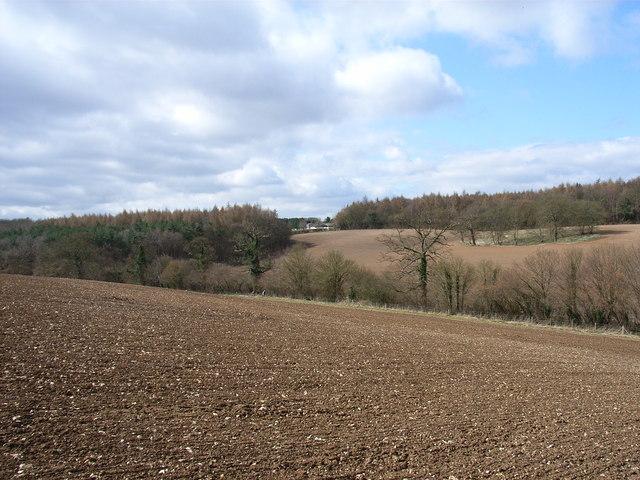 Arable farmland near Seer Green