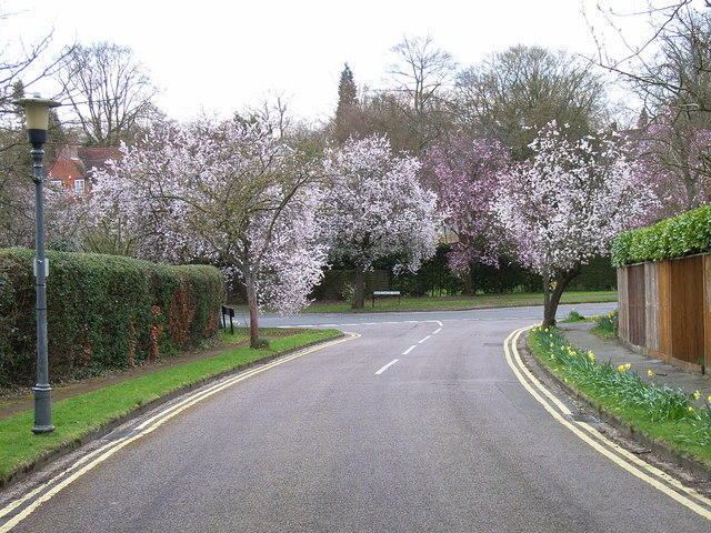 Chiltern Hills Road, Beaconsfield