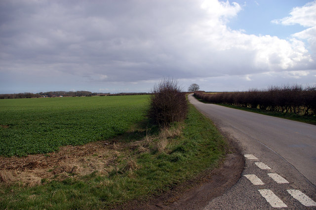 Looking towards Scamblesby