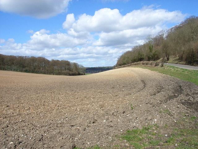 Farmland next to Penfold Lane