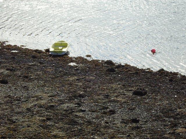 Beach, Lochgoilhead.
