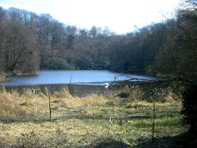 Serpentine Reservoir, Knypersley