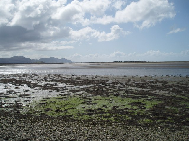 Looking south west across Foryd Bay (Nature Reserve)