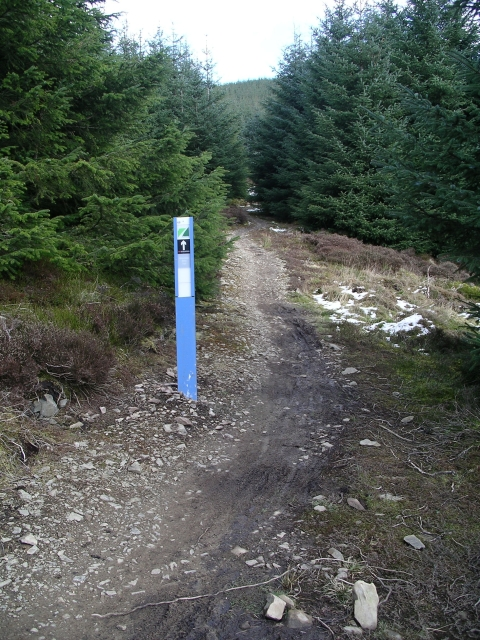Mountain bike trail, Makeness Hill