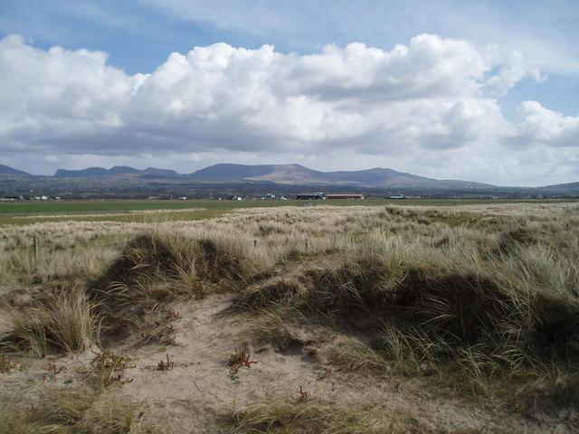 Sand Dunes at Morfa Dinlle
