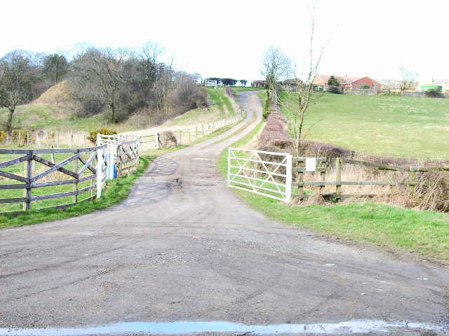 Driveway to Hastings House Farm