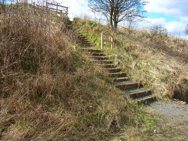 Access steps down to the Castle Eden Walkway