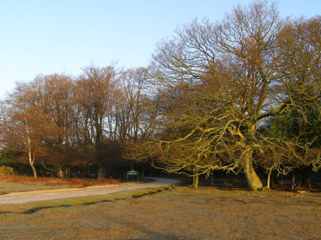 Entrance to Cadman's Pool car park, New Forest
