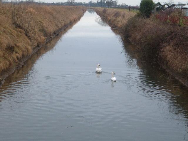 West fen drain