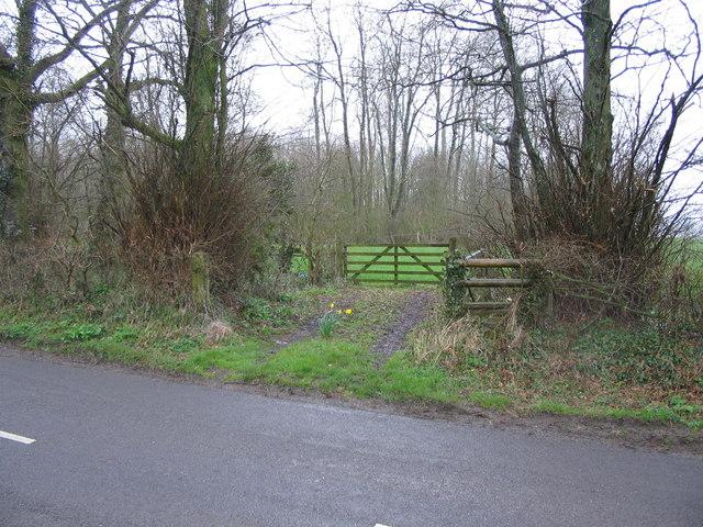 Footpath into Maidford Clump.