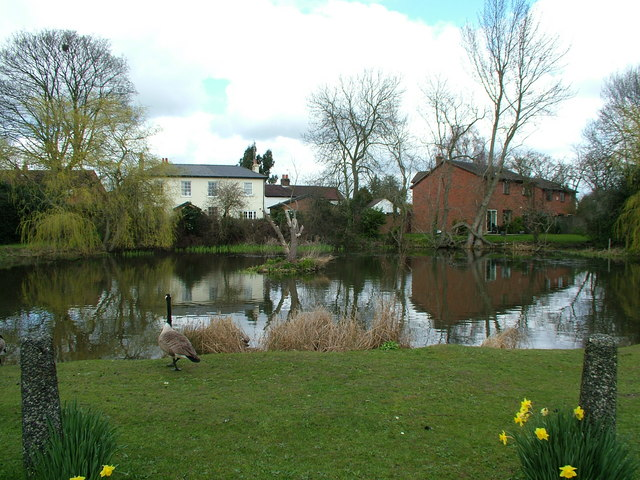 Woolmer Green Village Pond