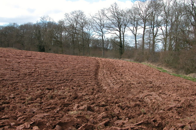 Herefordshire's Red Soil