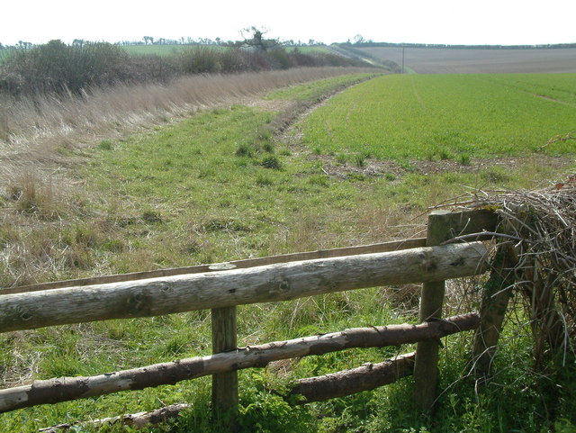 North of Badbury Rings, Dorset