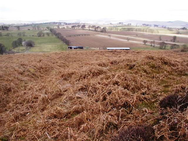 Looking NW from the Bracken Covered Slope Known as Hob's Mill