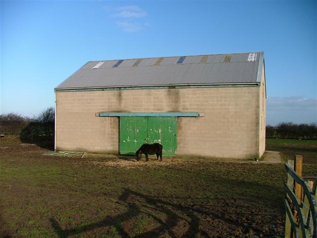 Barn and Occupant, Near New Marske