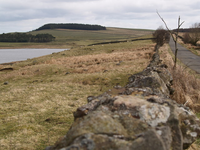 Grindon Lough and the road to Newbrough