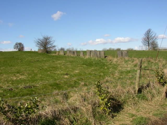 Stone fence near Back Brade, Rastrick