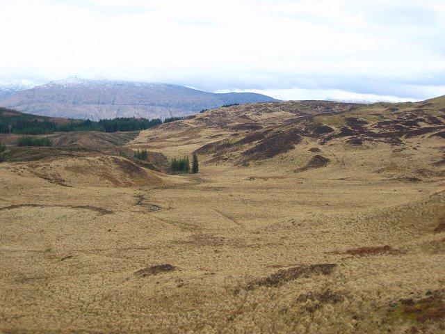 Bogs, Glen Aray