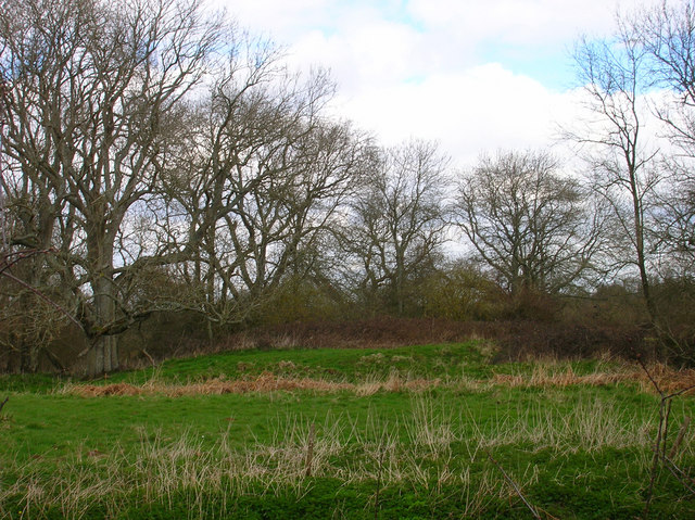 Motte and Bailey Earthwork, near Isfield Church