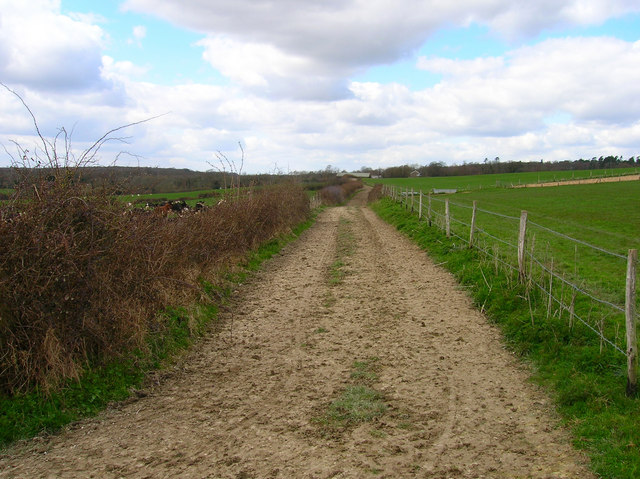 Farmtrack to Beaks Farm