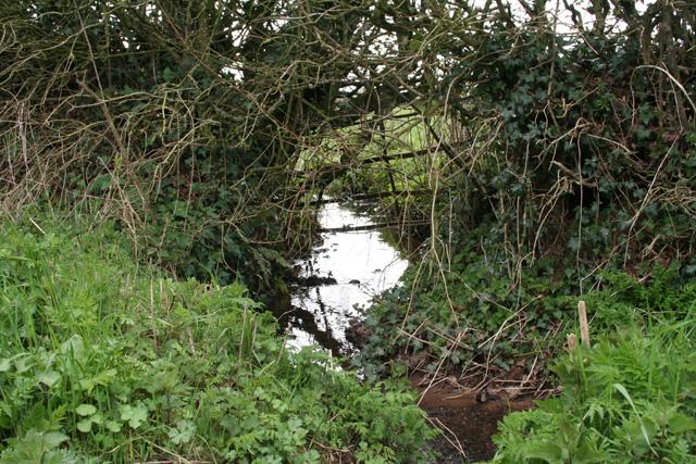 Uplowman: leat near Neddycott