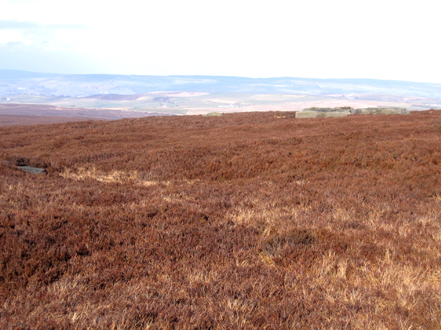 Maw Stones Hill, Keighley Moor, W Yorks