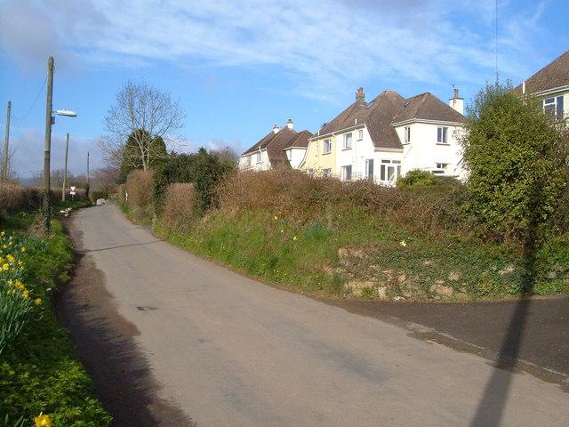 Near Hele Cross, Ashburton
