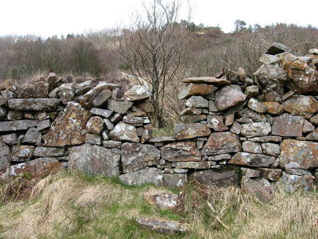 Stone Wall at Primrose Burn, Kinloch Glen, Rum