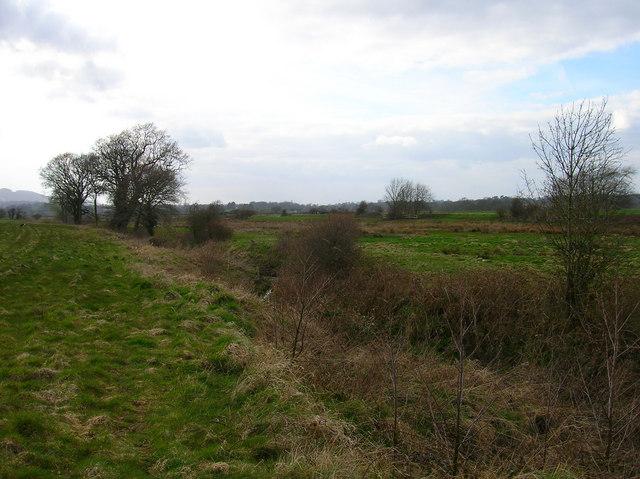 Course of a Stream near Wellingham House