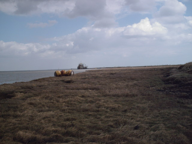 Saltings - East of Fleet Point