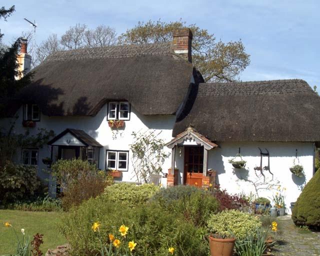 Box Cottage - 18th Century Grade II Cob and Thatch