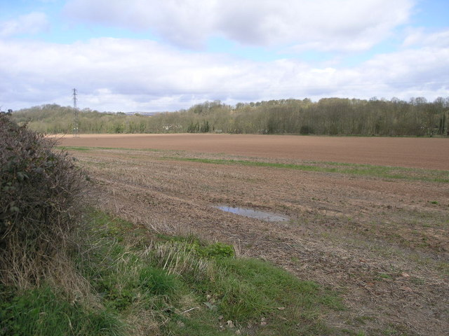 Flood Plain Field