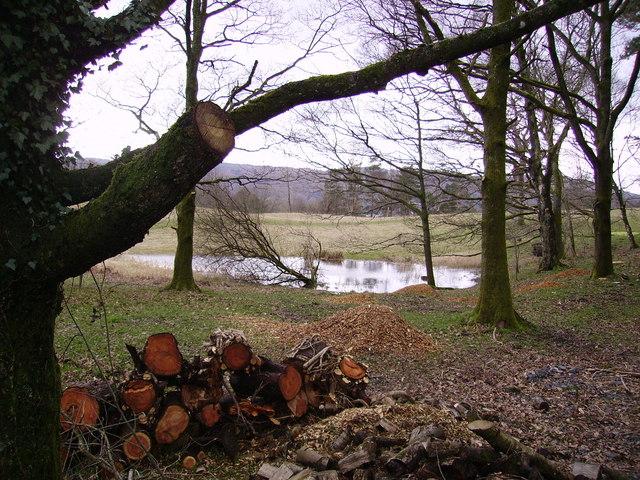 Woodpile Ecclerigg