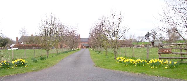 Cotts Farm