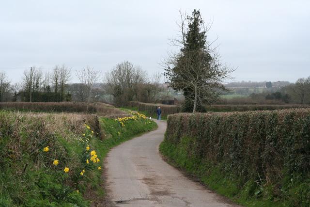 Culmstock: lane to Southey Barton