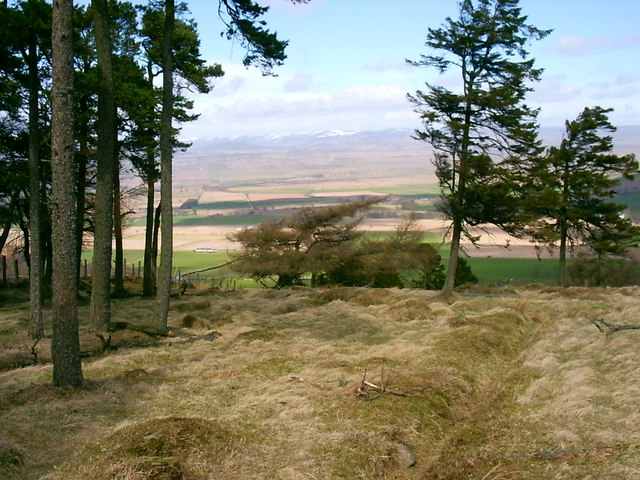 Hayston Hill or Kincaldrum Hill