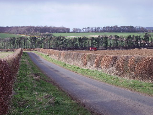 Lane near Marvingston
