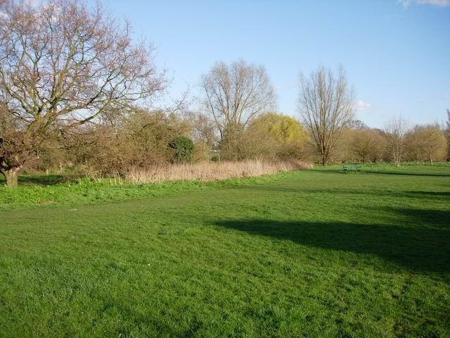 Open Space by Hogsmill