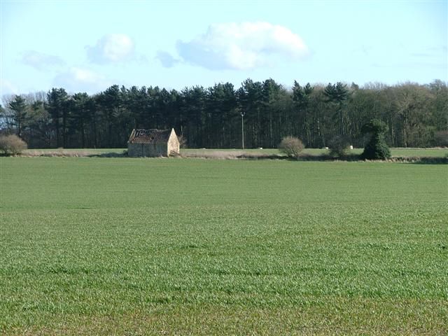 Barn and Arable Field, North of Cumby's Plantation