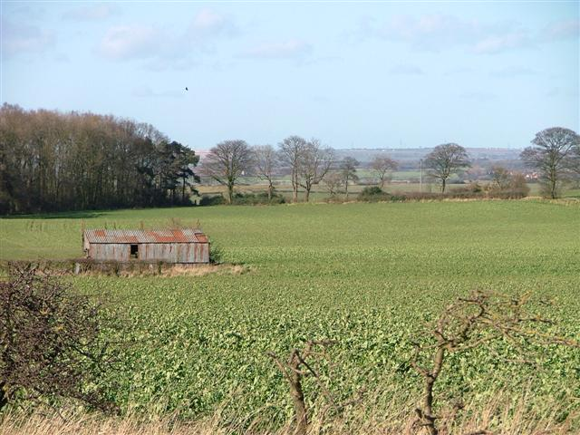 Barn and Arable Field, Off Lodge Lane