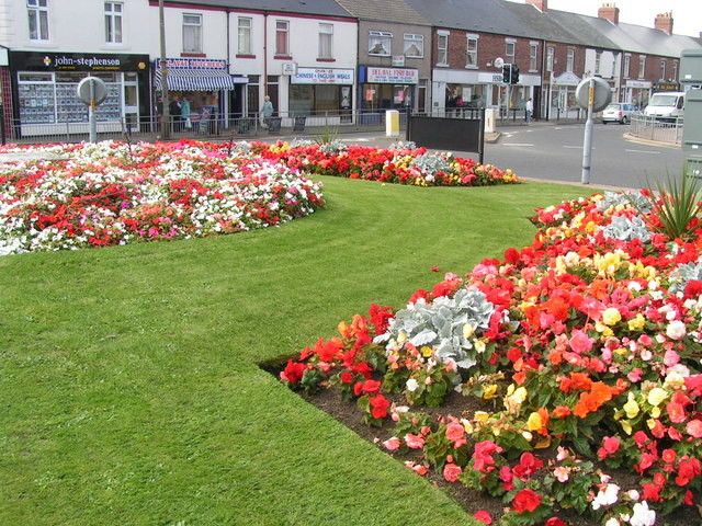 Seaton Delaval's Summer Flower Show