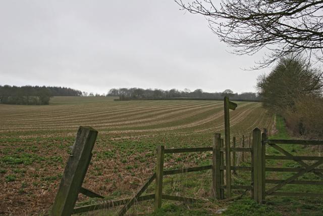 Farmland and footpath near Dummer Down Farm